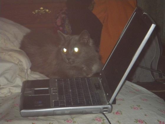 Sid Laptop 030